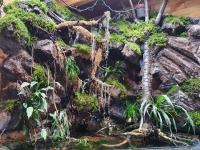 Akvárium tervezés, építés, karbantartás